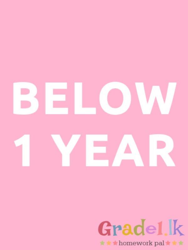 below-1-year